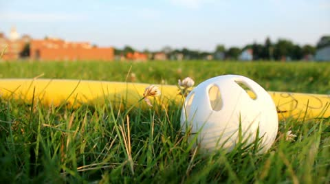 wiffle-ball-and-bat-grass-footage-012680645_iconl